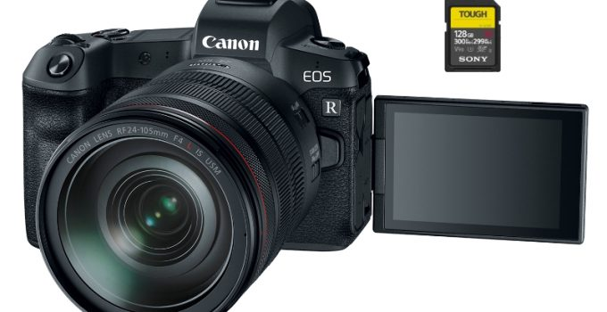 best sd memory cards canon r