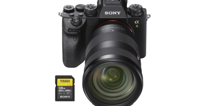 best sd memory cards sony a9ii
